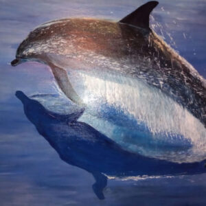 Dolphin Picture in Acrylic