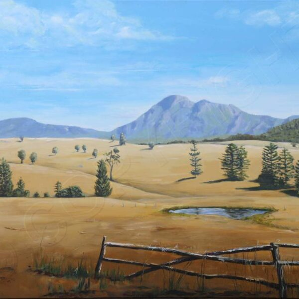 Golden Plains by Karen CollinsOil on Canvas $1500